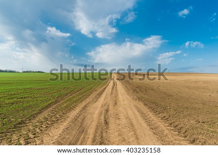 Cultivated green meadow. Rural scene. Country road under blue sky - stock photo