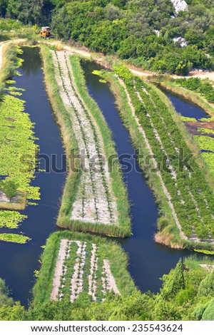 Cultivated land surrounded by canals in the Neretva delta, Croatia