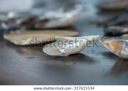 cultured pearls factory on the sea  - stock photo