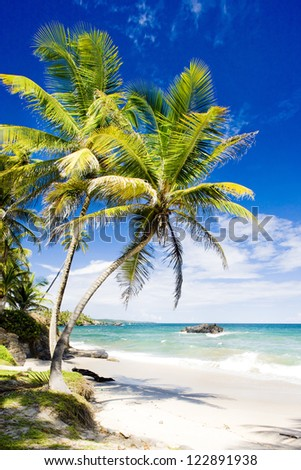 Cumana Bay, Trinidad - stock photo