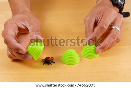 Cup and Lady Bug Memory Toy - stock photo