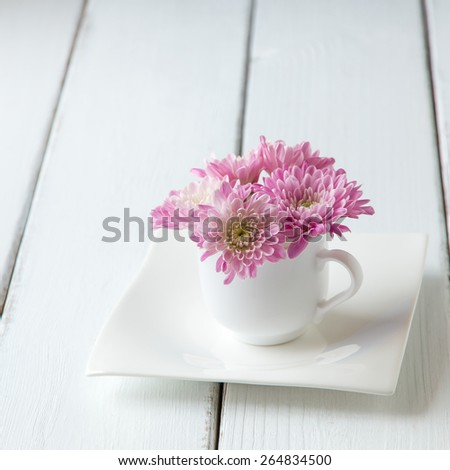 Cup full of pink  mum flowers on blue old wooden table. selective focus, shallow dof - stock photo