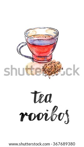 "Cup of healthy and tasty traditional herbal red beverage tea with spices, ""Rooibos tea"", watercolor, hand drawn - Illustration"