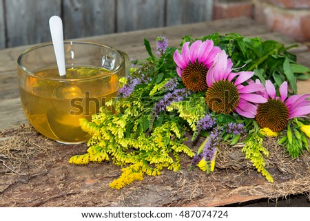 Cup of herbal tea or infusion from solidago and echinacea two healing plant for many diseases.