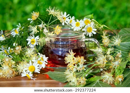 Cup of herbal tea with chamomile and linden flowers on wooden table in garden - stock photo