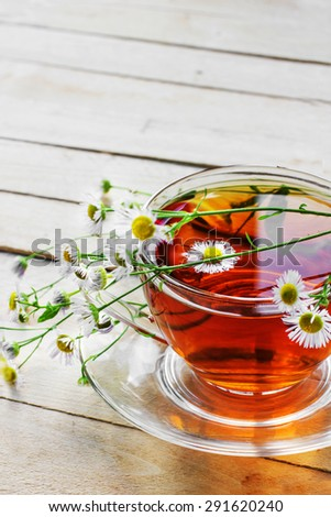 cup of herbal tea with  daisy flowers - stock photo