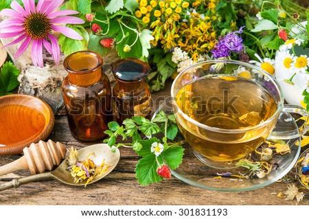 herbal remedies stock images, royalty-free images & vectors, Skeleton