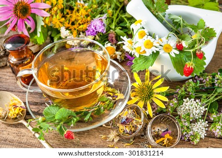 Cup of herbal tea with wild flowers and various herbs - stock photo