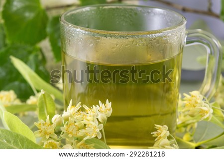 Cup of linden tea decorated with fresh  lime flowers - stock photo