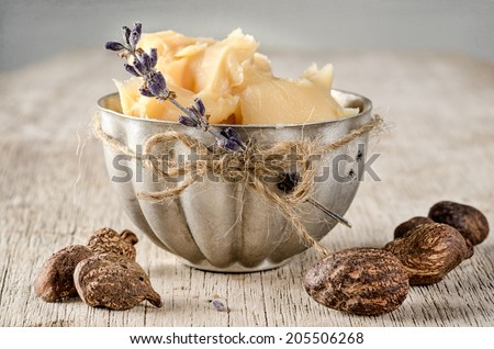 Cup of shea butter with shea nuts - stock photo