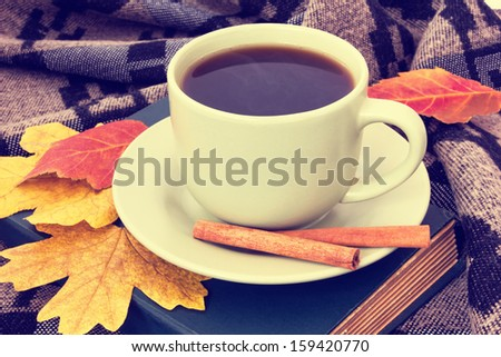 cup of tasty coffee with cinnamon on plaid - stock photo