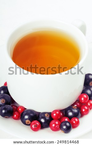 Cup of tea with juicy berries currant. Red and black currants. - stock photo
