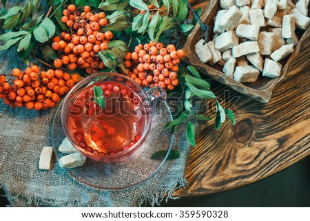 Cup of tea with rowan berries (sorbus aucuparia, ashberry) and brown sugar on a wooden table  - stock photo