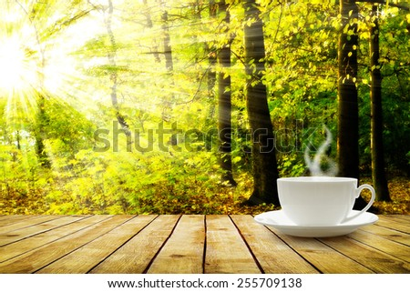 Cup with hot drink on wood table over forest  background - stock photo