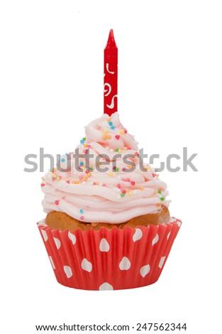 Cupcake isolated on white background - stock photo