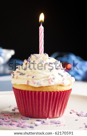 Cupcake with icing and sprinkles topped with one burning birthday candle.