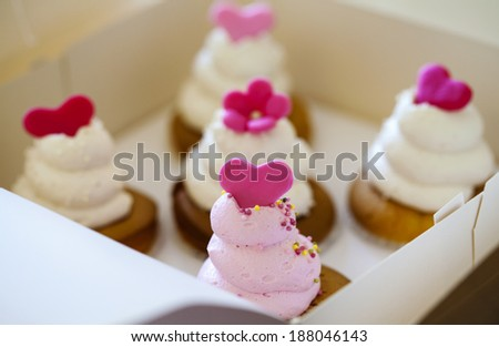 Cupcakes in the box