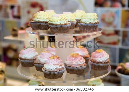 Cupcakes served in a pastry shop