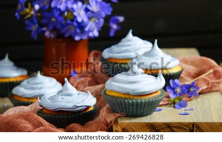 cupcakes with blueberries - stock photo