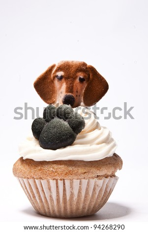 Cupcakes with Paw print with a dog on top - stock photo
