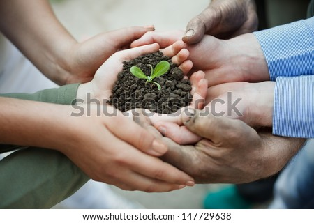 Cupped hands holding a new plant in soil - stock photo