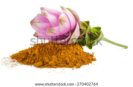 Curcuma flower and  powder isolated on white - stock photo