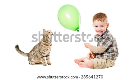 Curious cat Scottish Straight and cheerful boy isolated on white background