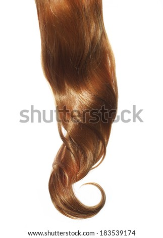 Curly Brown Hair isolated on white background