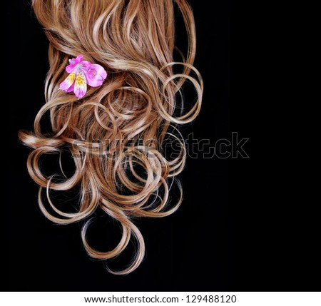 curly brown hair over black background with pink iris flower - stock photo
