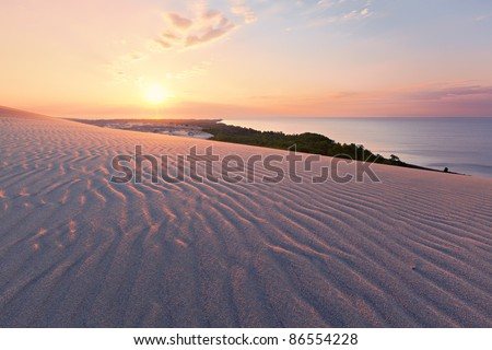 Curonian Spit sands approaching the forest by the sea - stock photo