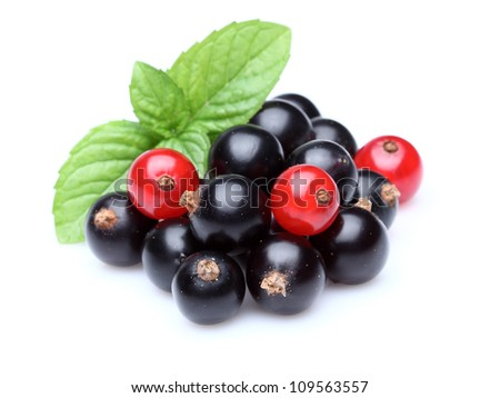 Currant with mint