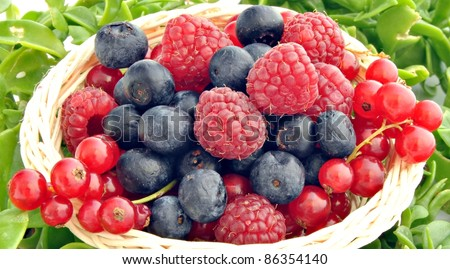 Currants, blueberries and raspberries