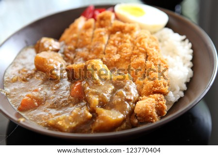 Curry rice with fried pork - stock photo