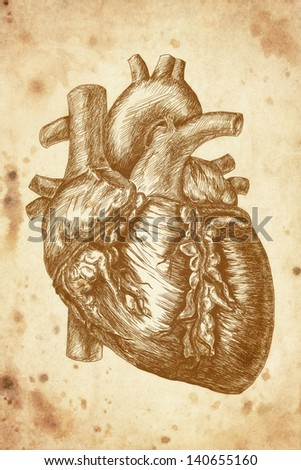 cursory drawing heart on old paper background - stock photo