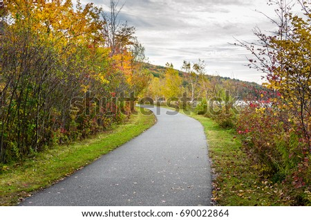 Curve along a Lakeside Paved Path for Pedestrians and Cyclists on a Cloud Autumn Day,