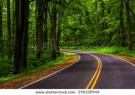 Curve along Skyline Drive in Shenandoah National Park, Virginia. - stock photo