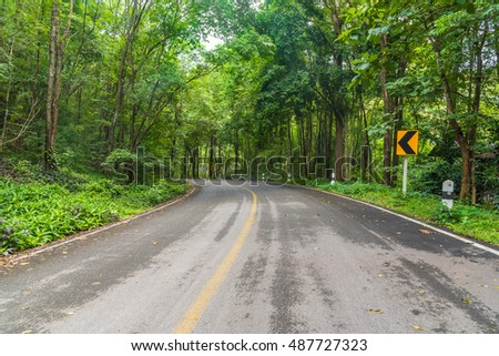 Curve road up hill in rain forest.