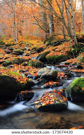 curve waterfall in the autumn forest - stock photo