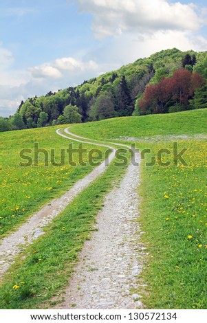 curved bike way at springtime over green meadow toward mixes forest, bavarian landscape - stock photo