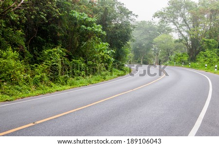 Curved road and green trees