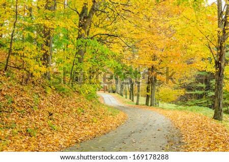 Curving Country Road in Autumn - stock photo
