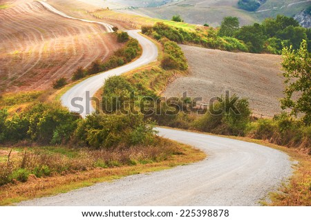 Curving road between fields and trees - stock photo