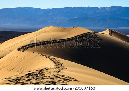 Curving Sand Dune at Death Valley - stock photo