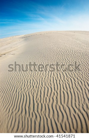 Curvy stripes formed by wind on a sand.