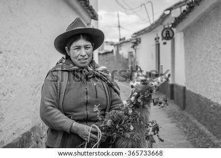 Cusco, Peru - Circa April 2015 - Peruvian woman with a llama - stock photo