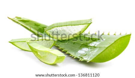 cut aloe leaves on white background - stock photo