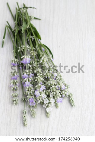 Cut lavender on a distressed wood background.  - stock photo
