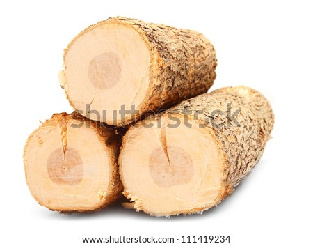 Cut logs fire wood from Common Oak tree (Quercus robur). Renewable resource of a energy. Environmental concept. - stock photo