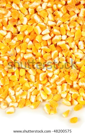cut maize on the white background