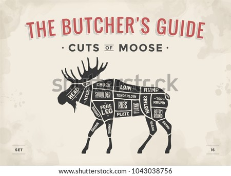 Cuts Of Moose Diagram Different Cuts Of Deer Wire Diagrams